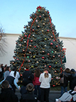 The Village Aglow Tree Lighting Ceremony