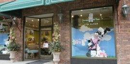 Teacups and Toys: A Pet Boutique